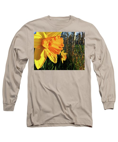 Long Sleeve T-Shirt featuring the photograph Daffodil Evening by Robert Knight