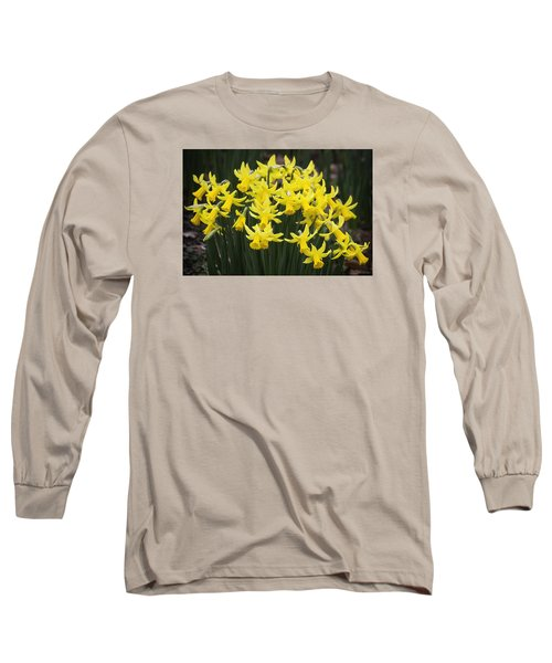 Daffodil Yellow Long Sleeve T-Shirt by Shirley Mitchell