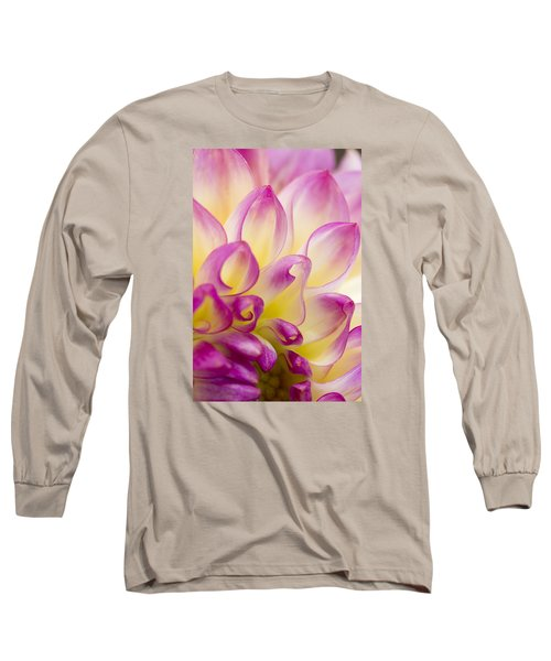 Dahlia Petals 5 Long Sleeve T-Shirt