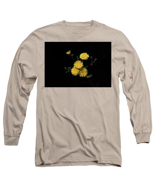 Dandelions Long Sleeve T-Shirt
