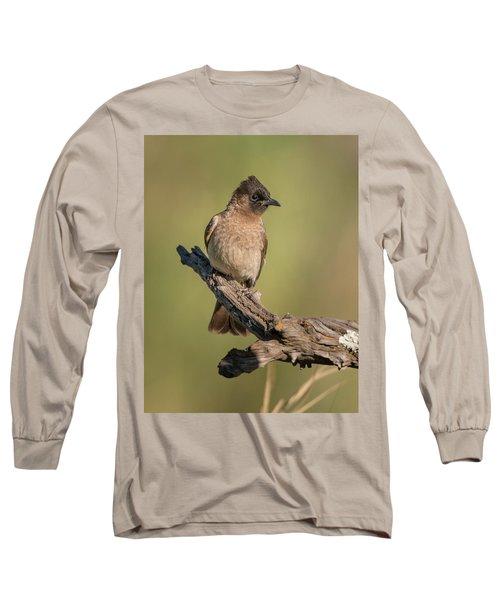 Dark-capped Bulbul Long Sleeve T-Shirt