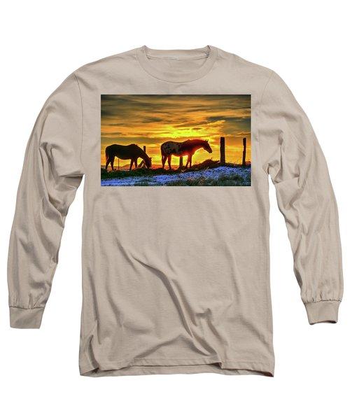 Dawn Horses Long Sleeve T-Shirt