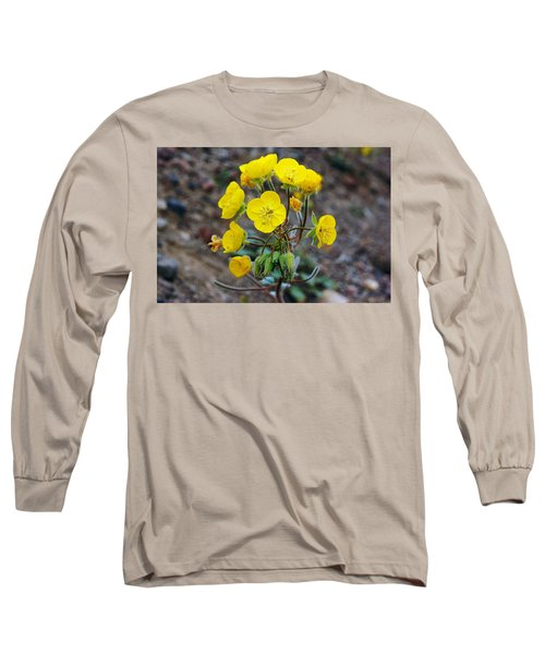 Death Valley Superbloom 306 Long Sleeve T-Shirt by Daniel Woodrum
