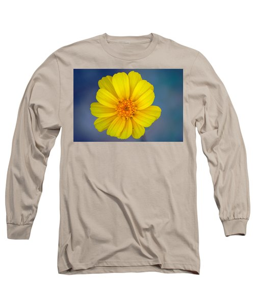 Death Valley Superbloom 403 Long Sleeve T-Shirt by Daniel Woodrum