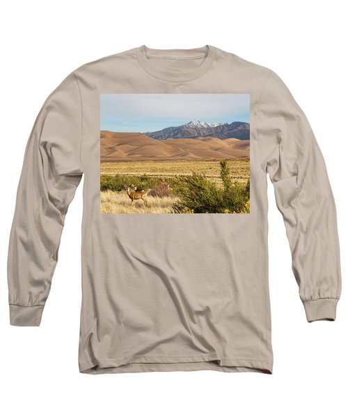 Long Sleeve T-Shirt featuring the photograph Deer And The Colorado Sand Dunes by James BO Insogna