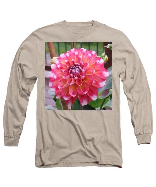 Denali Dahlia Long Sleeve T-Shirt by Karen J Shine