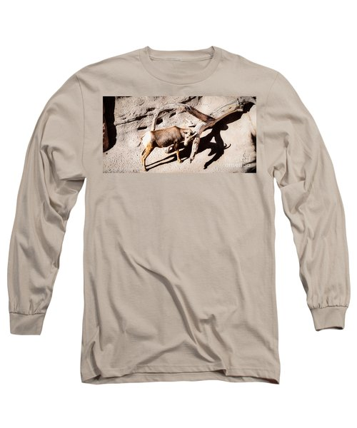 Desert Bighorn Ram Long Sleeve T-Shirt by Lawrence Burry