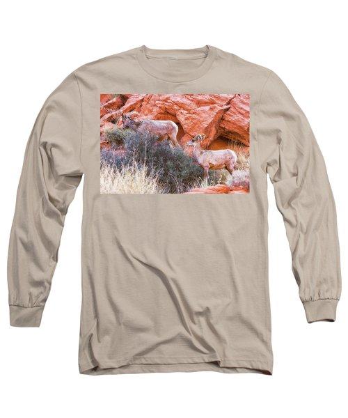 Desert Bighorn Sheep  Long Sleeve T-Shirt