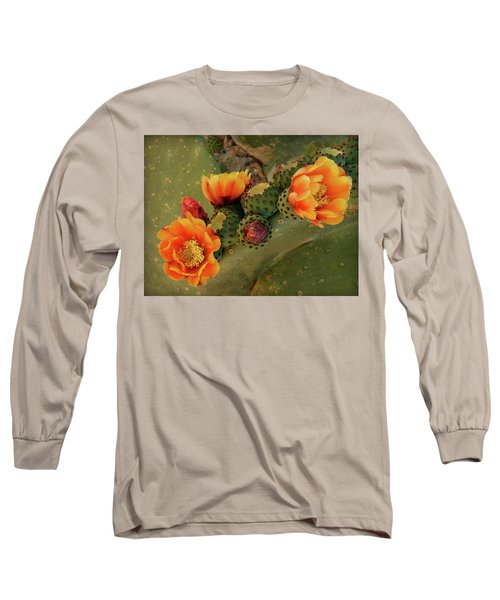 Long Sleeve T-Shirt featuring the photograph Desert Flame by Lucinda Walter
