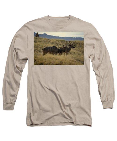 Desert Palm Landscape Long Sleeve T-Shirt