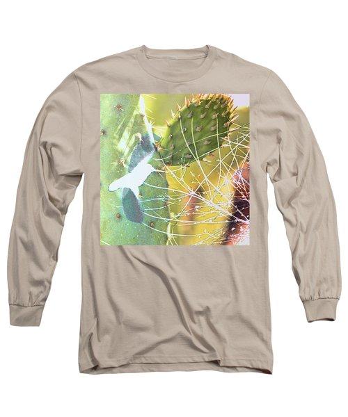 Desert Spring Long Sleeve T-Shirt