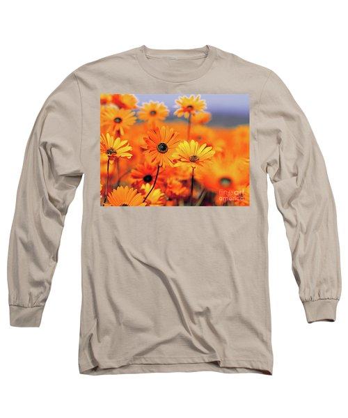 Details In Orange Long Sleeve T-Shirt