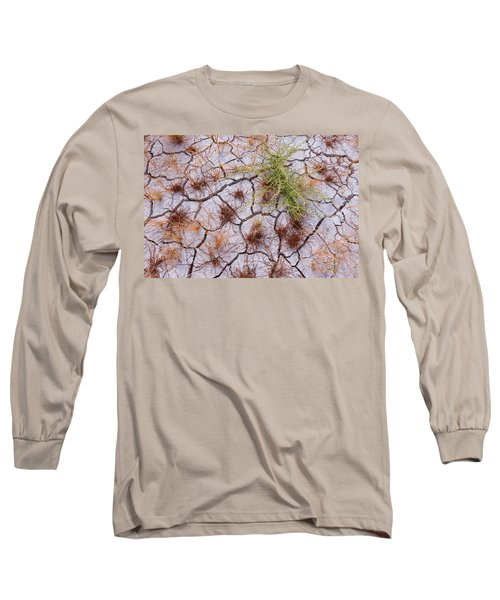 Details Of The Playa Long Sleeve T-Shirt