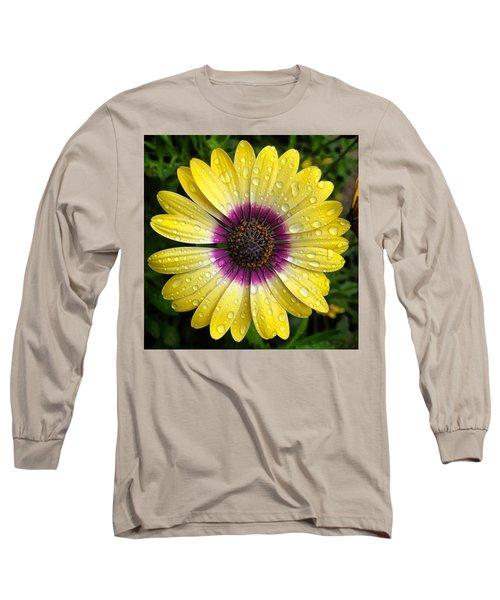 Dew Dropped Daisy Long Sleeve T-Shirt