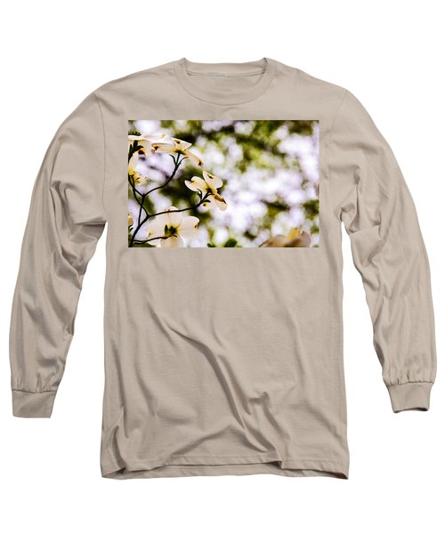 Dogwoods Under The Pines Long Sleeve T-Shirt by John Harding