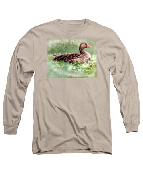 Long Sleeve T-Shirt featuring the photograph Down With The Daisies  by Linsey Williams