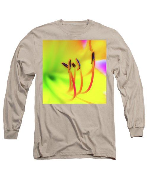 Dreamy Daylily Long Sleeve T-Shirt