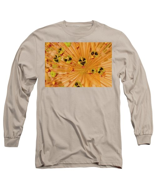 Dried Allium Seed Macro Long Sleeve T-Shirt