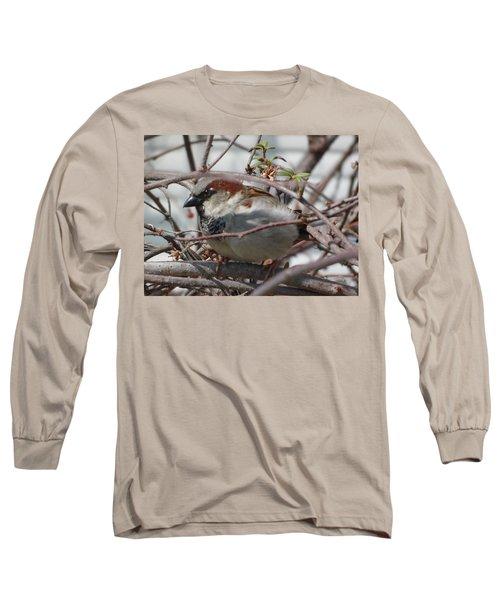 Early Bird Long Sleeve T-Shirt