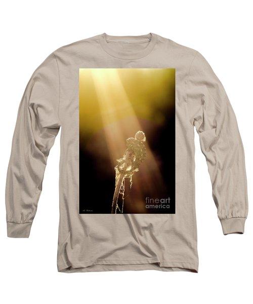 Long Sleeve T-Shirt featuring the photograph Early Morning Sun Bath by Arik Baltinester