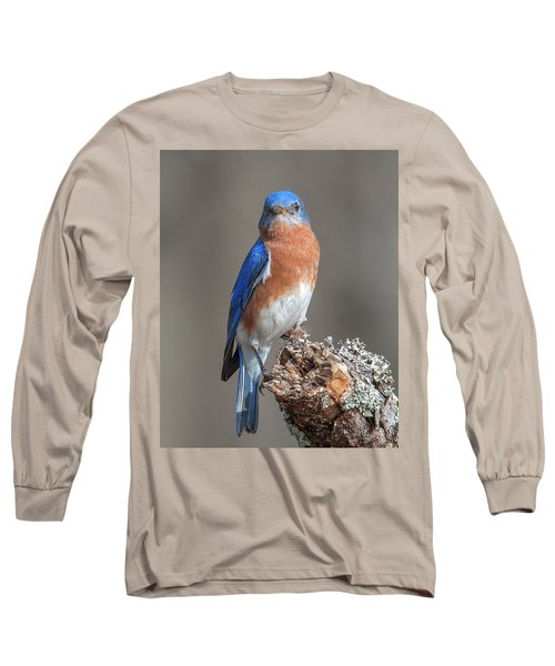 Eastern Bluebird Dsb0300 Long Sleeve T-Shirt