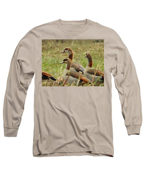 Long Sleeve T-Shirt featuring the photograph Egyptian Geese by Betty-Anne McDonald