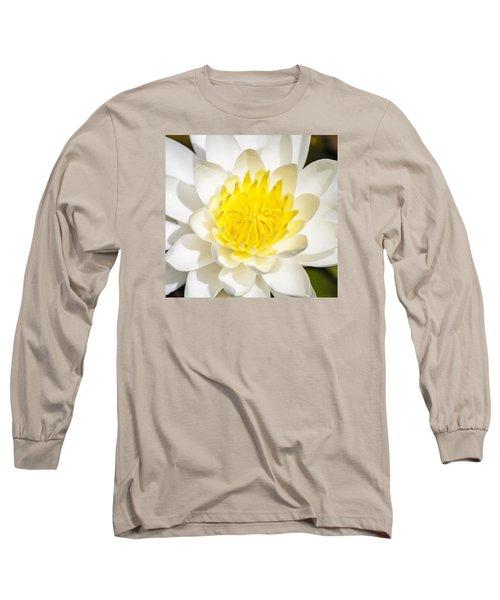 Elegant Lotus Long Sleeve T-Shirt by Christopher L Thomley