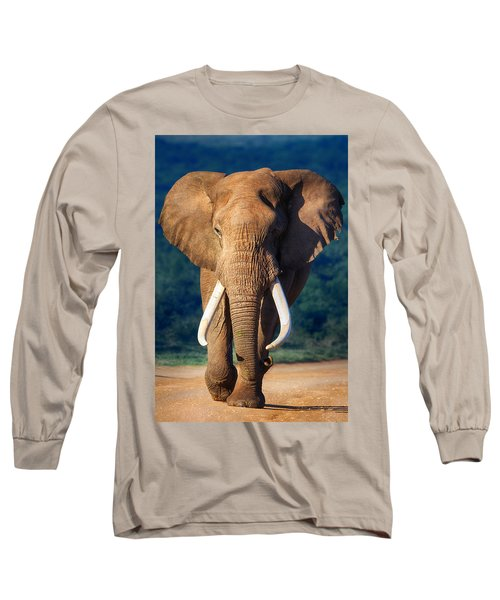 Elephant Approaching Long Sleeve T-Shirt by Johan Swanepoel