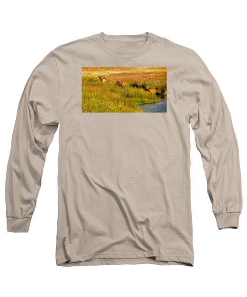 Elk In The Wild Flowers Long Sleeve T-Shirt by Cathy Donohoue