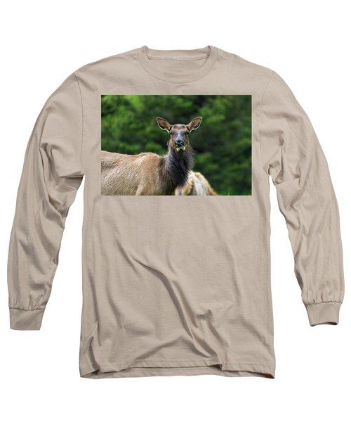 Elk Staring Closeup Portrait Long Sleeve T-Shirt
