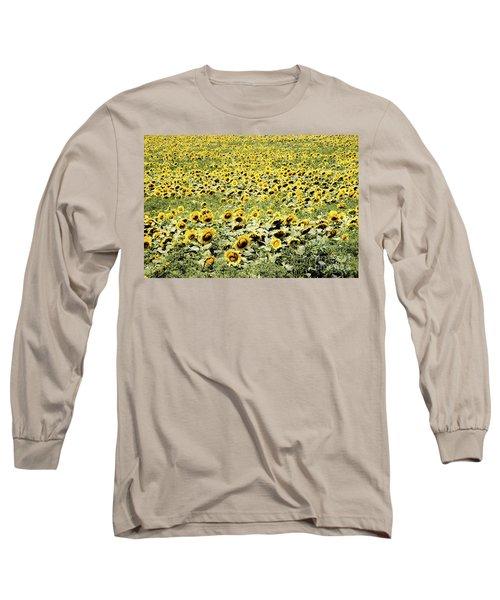 Endless Sunflowers Long Sleeve T-Shirt