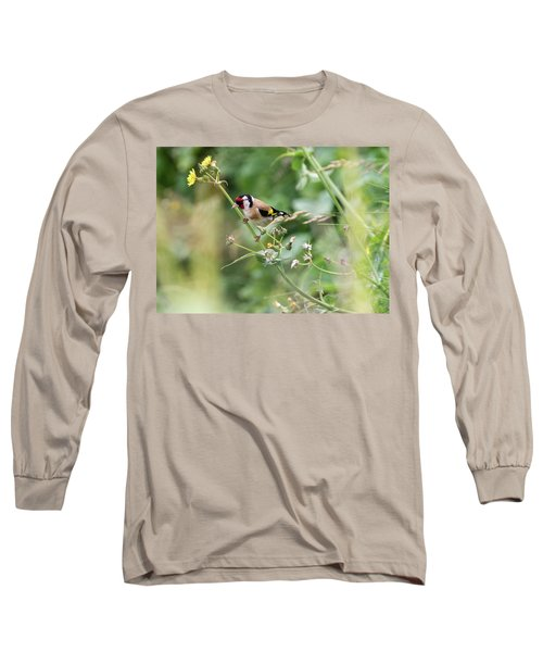 European Goldfinch Perched On Flower Stem B Long Sleeve T-Shirt