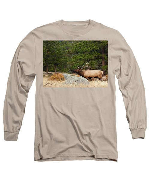Evening Song Long Sleeve T-Shirt