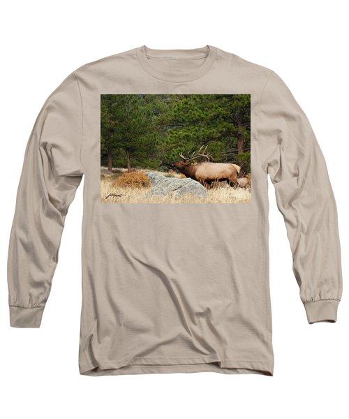 Evening Song Long Sleeve T-Shirt