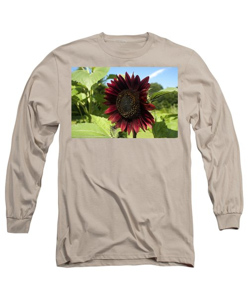 Evening Sun Sunflower #1 Long Sleeve T-Shirt