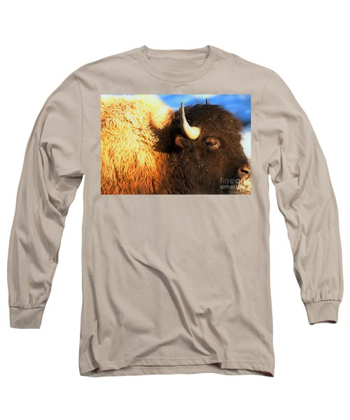 Eyes Of The Bison Spring 2018 Long Sleeve T-Shirt