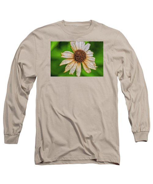 Faded Cone Flower Long Sleeve T-Shirt by Tom Singleton