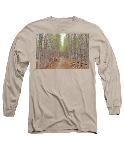Fall Aspen Trail  Long Sleeve T-Shirt
