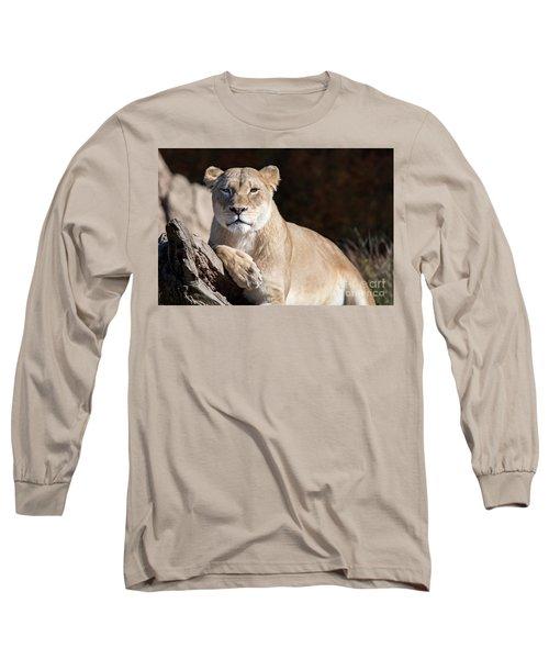 Fall Lioness Long Sleeve T-Shirt
