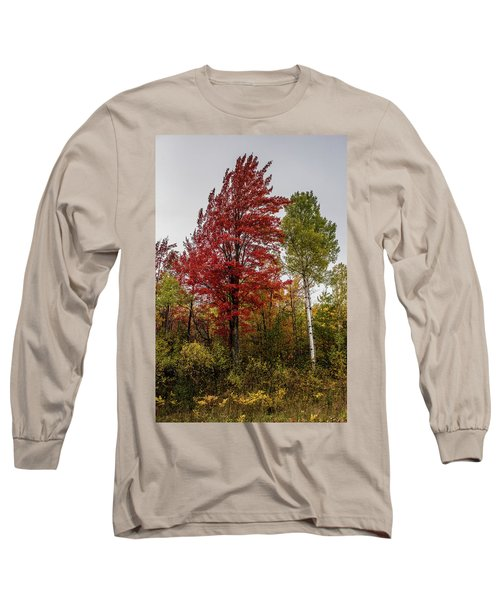 Long Sleeve T-Shirt featuring the photograph Fall Maple by Paul Freidlund