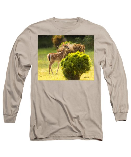 Long Sleeve T-Shirt featuring the photograph Fawn by Angel Cher