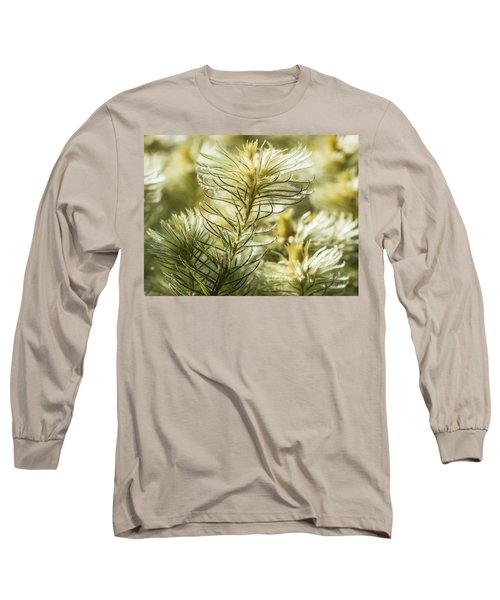Featherheads Long Sleeve T-Shirt