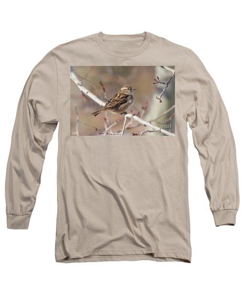 Female House Sparrow Long Sleeve T-Shirt