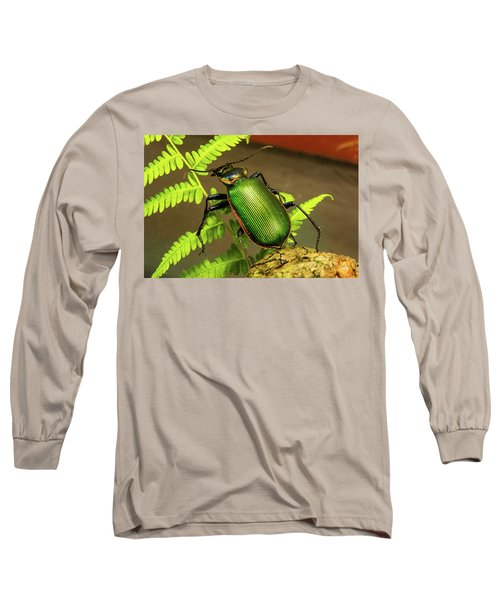 Fiery Hunter Carabid Long Sleeve T-Shirt