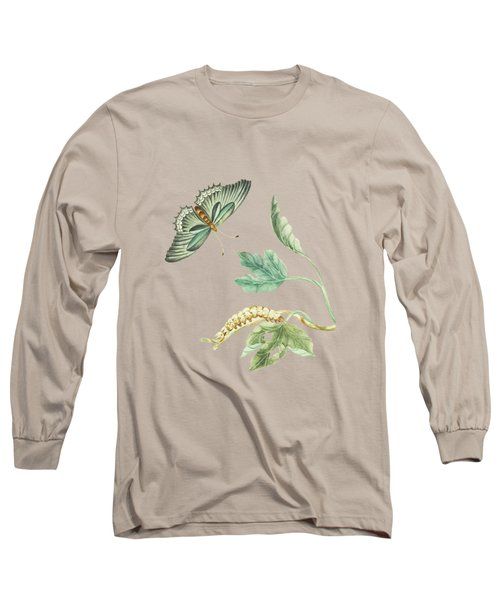 Fig Tree Branch With Caterpillar And Butterfly By Cornelis Markee 1763 Long Sleeve T-Shirt