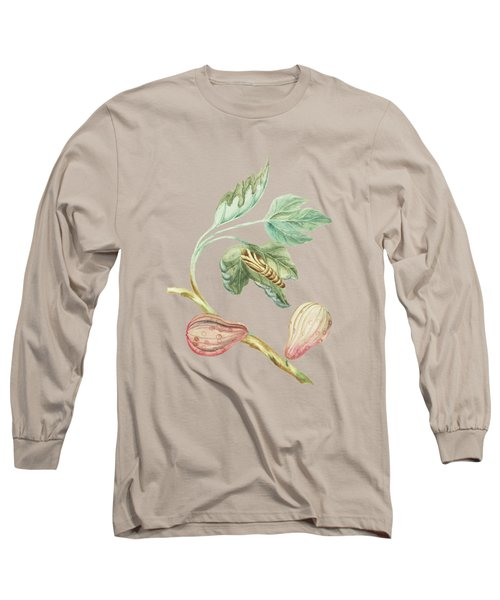 Fig Tree Branch With Caterpillar By Cornelis Markee 1763 Long Sleeve T-Shirt