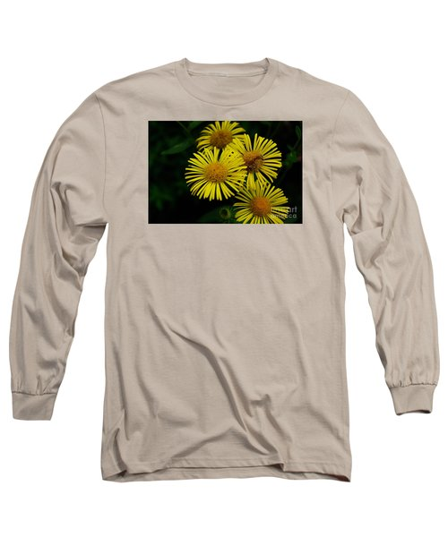 Fireworks In Yellow Long Sleeve T-Shirt by John S
