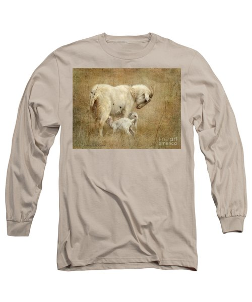 First Day Of Life Long Sleeve T-Shirt by Kathy Russell