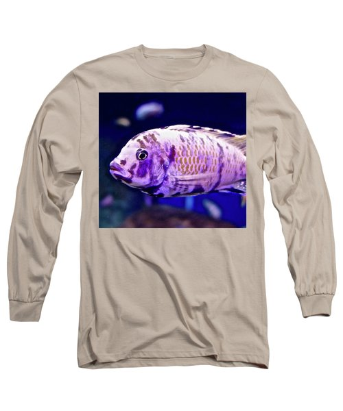 Calico Goldfish Long Sleeve T-Shirt