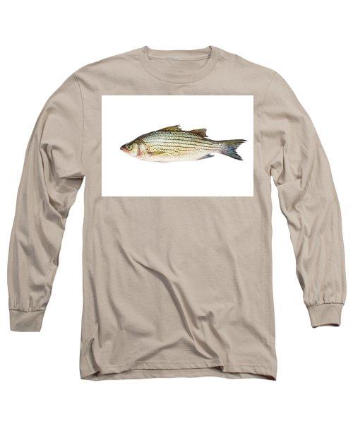Fish Long Sleeve T-Shirt